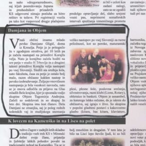 Reference komentarji mnenje strank Damjana in Objem Revija Casopisni clanek