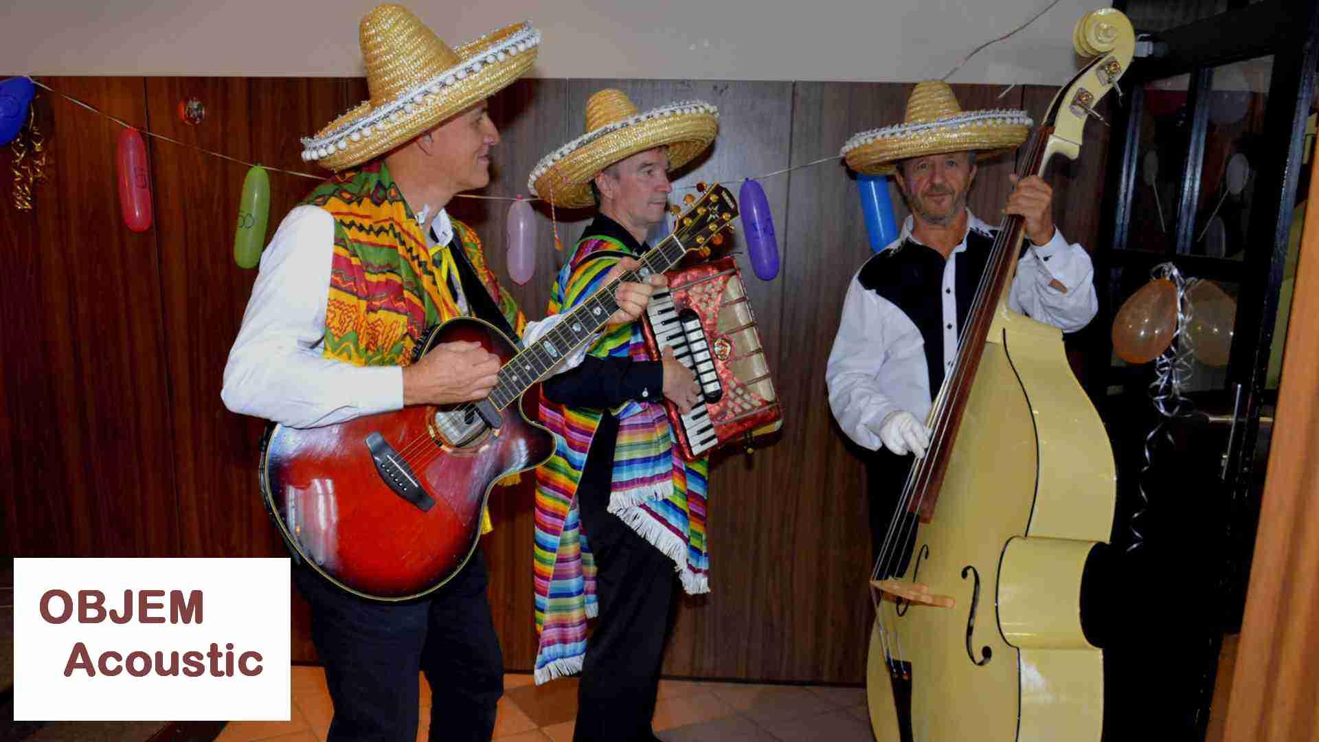 AKUSTIČNA SKUPINA TRIO BAND - Ansambel Acoustic trio za poroko, zabavo, rojstni dan, abrahama, žurko, praznovanje, fešto, obletnico poroke.